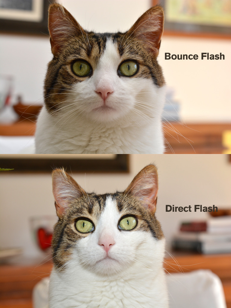 Flash Comparison 2
